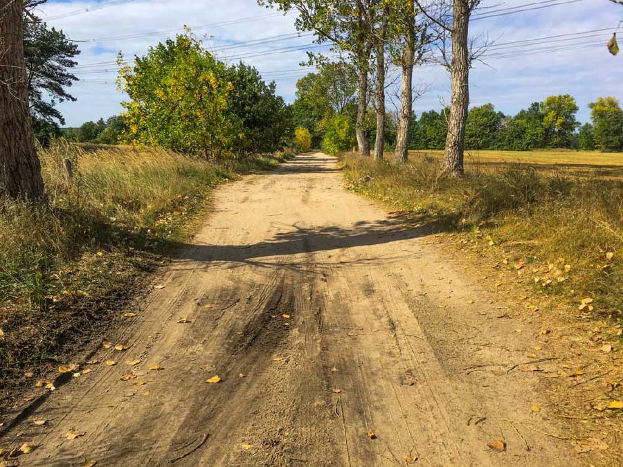 Sandige Wege im Naturschutzgebiet Nuthe Nieplitz