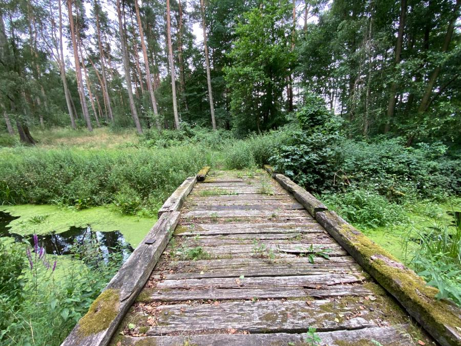 alte Brücke am Beutelsee