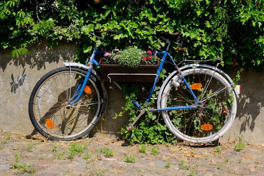 Fahrrad als Blumenständer