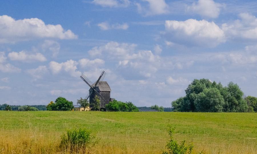 Bockwindmühle Vehlefanz, vom Mühlensee Vehlefanz aus gesehen