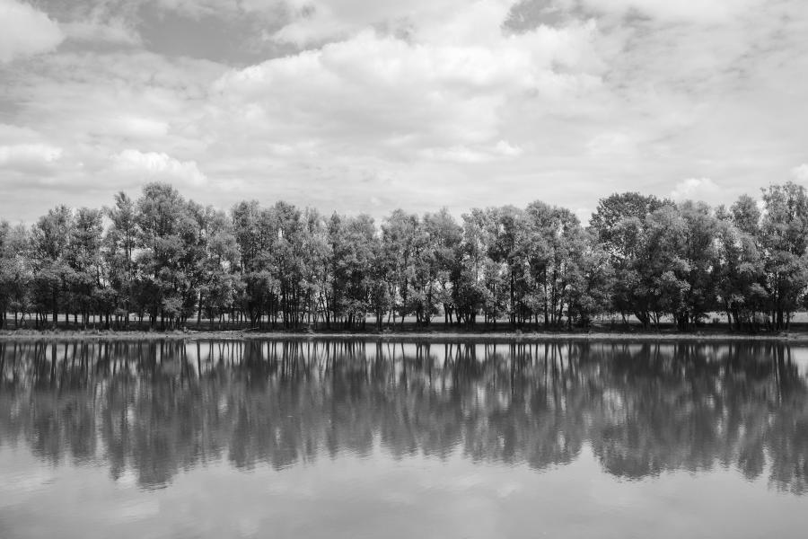 Baumallee am Ufer des Mühlensees Vehlefanz