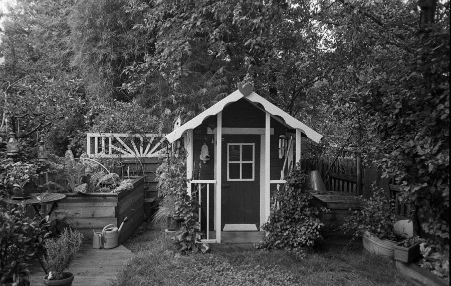 Garten im Sommer (Olympus µ II; Ilford HP5, Rodinal)